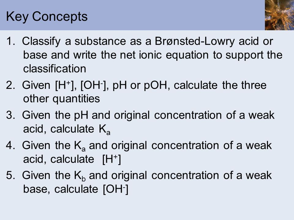 Key Concepts 1. Classify a substance as a Brønsted-Lowry acid or base and write the net ionic equation to support the classification 2. Given [H + ],
