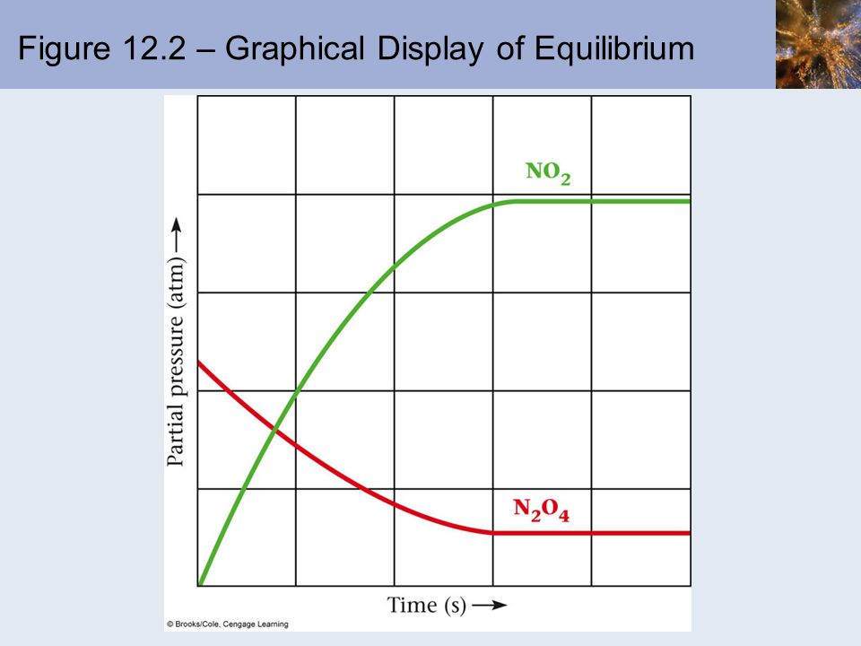 Figure 12.2 – Graphical Display of Equilibrium
