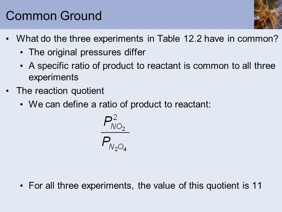 Common Ground What do the three experiments in Table 12.2 have in common? The original pressures differ A specific ratio of product to reactant is com