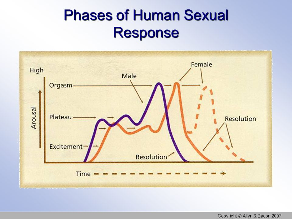 Copyright © Allyn & Bacon 2007 Phases of Human Sexual Response