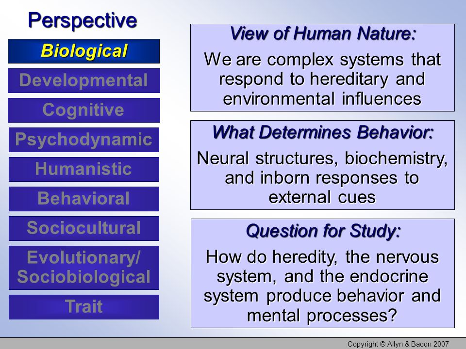 Copyright © Allyn & Bacon 2007 View of Human Nature: We are complex systems that respond to hereditary and environmental influences What Determines Be
