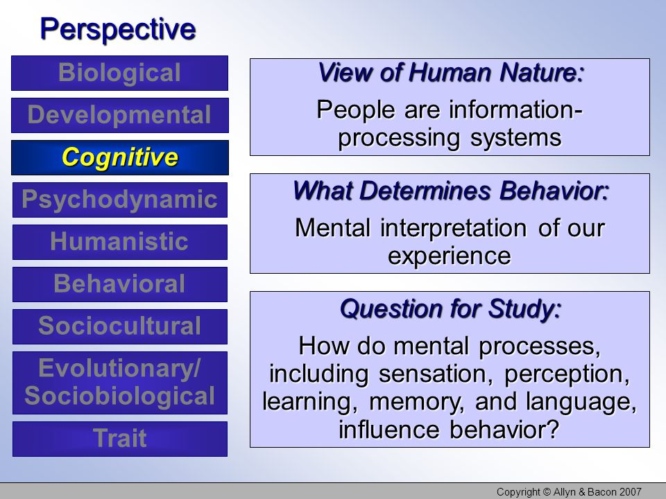 Copyright © Allyn & Bacon 2007 View of Human Nature: People are information- processing systems What Determines Behavior: Mental interpretation of our