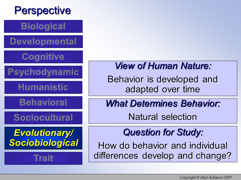 Copyright © Allyn & Bacon 2007 View of Human Nature: Behavior is developed and adapted over time Perspective What Determines Behavior: Natural selecti