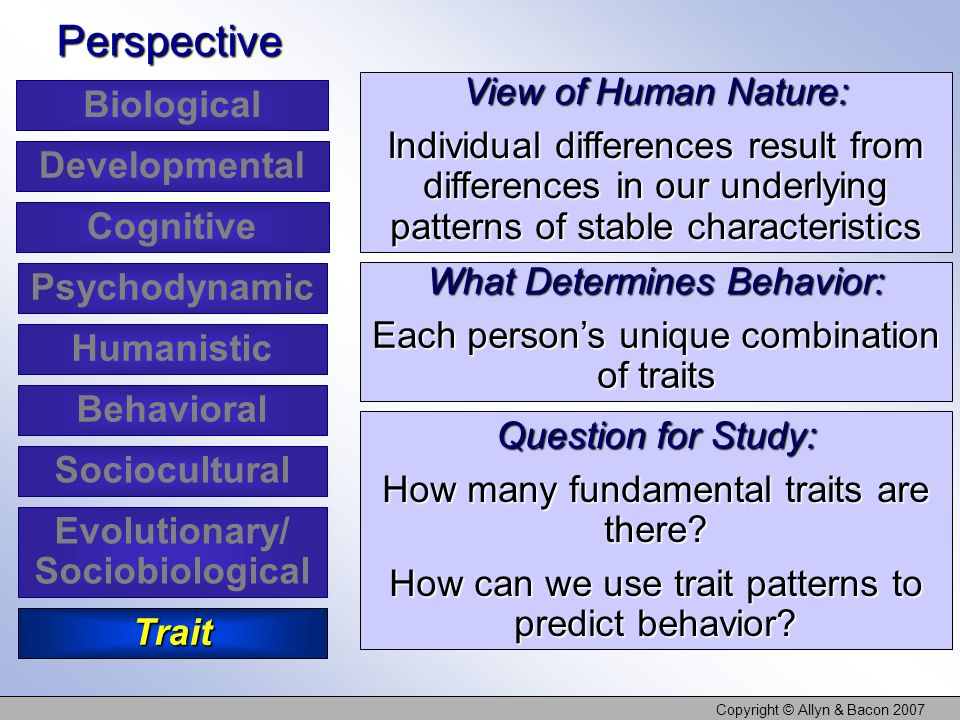 Copyright © Allyn & Bacon 2007 View of Human Nature: Individual differences result from differences in our underlying patterns of stable characteristi