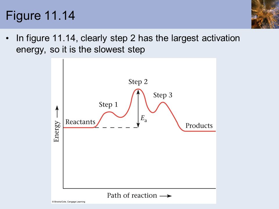 Figure 11.14 In figure 11.14, clearly step 2 has the largest activation energy, so it is the slowest step