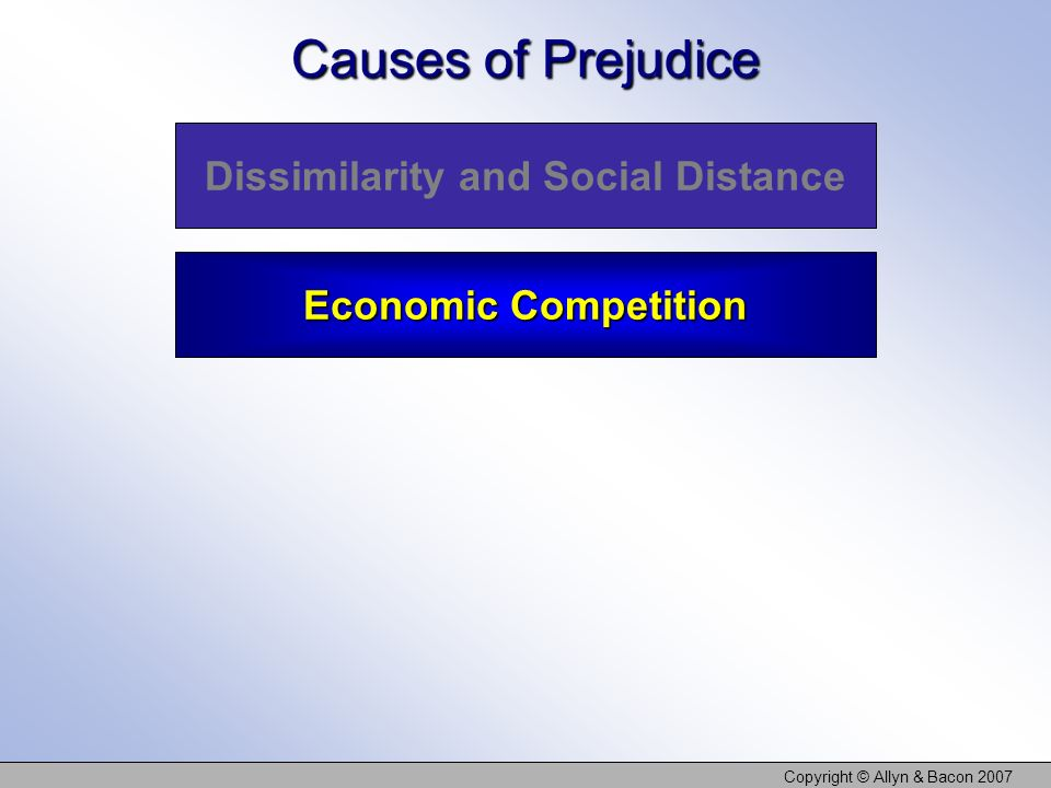 Copyright © Allyn & Bacon 2007 Causes of Prejudice Dissimilarity and Social Distance Economic Competition