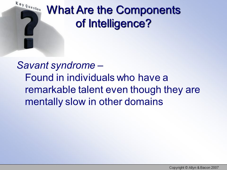 Copyright © Allyn & Bacon 2007 What Are the Components of Intelligence.