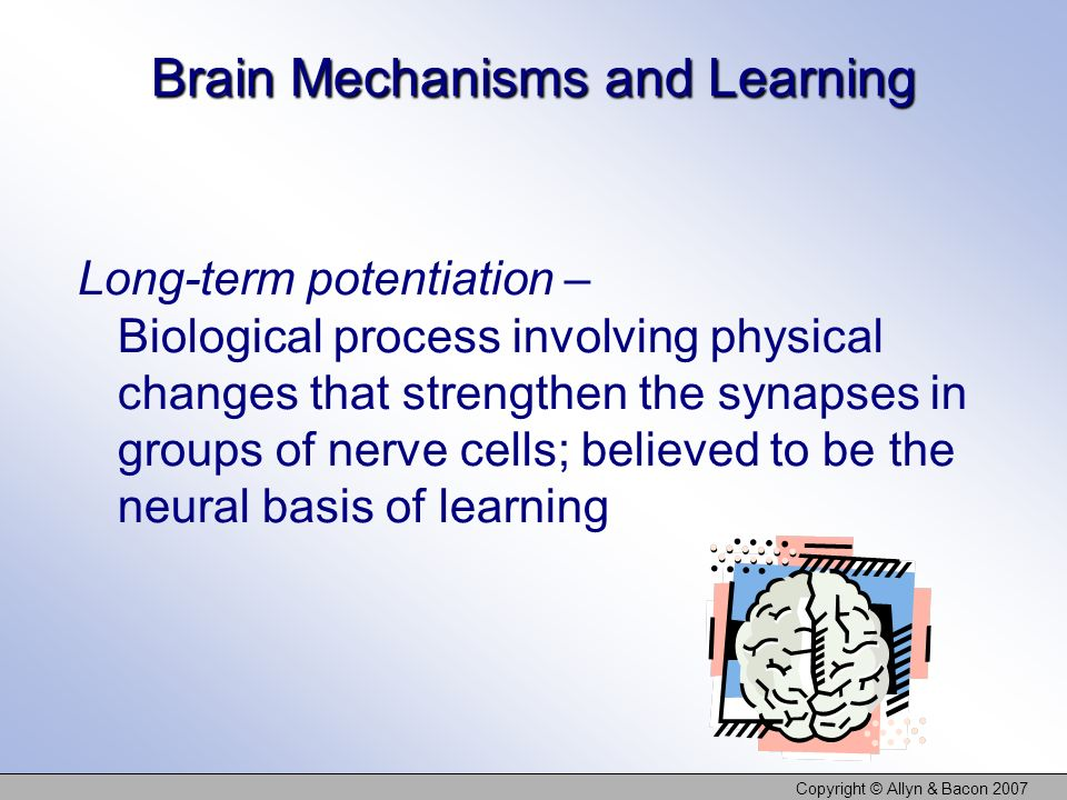 Copyright © Allyn & Bacon 2007 Brain Mechanisms and Learning Long-term potentiation – Biological process involving physical changes that strengthen th