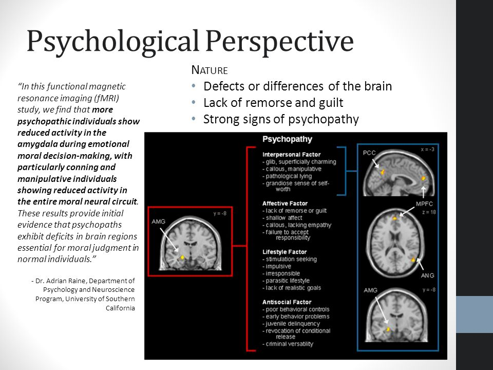 Psychological Perspective N ATURE Defects or differences of the brain Lack of remorse and guilt Strong signs of psychopathy In this functional magneti