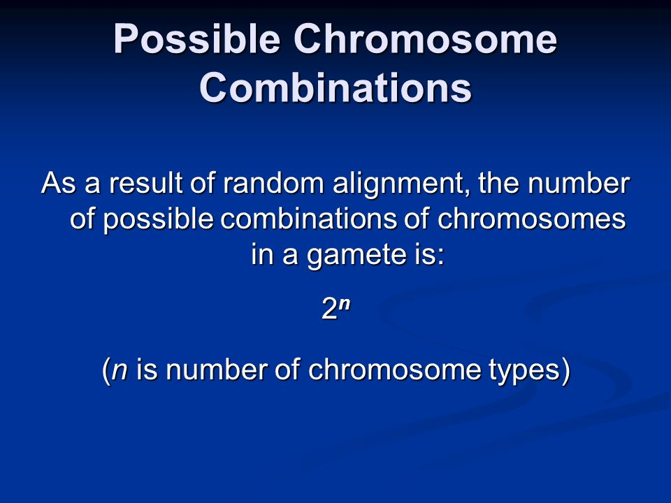 Possible Chromosome Combinations As a result of random alignment, the number of possible combinations of chromosomes in a gamete is: 2 n (n is number of chromosome types)