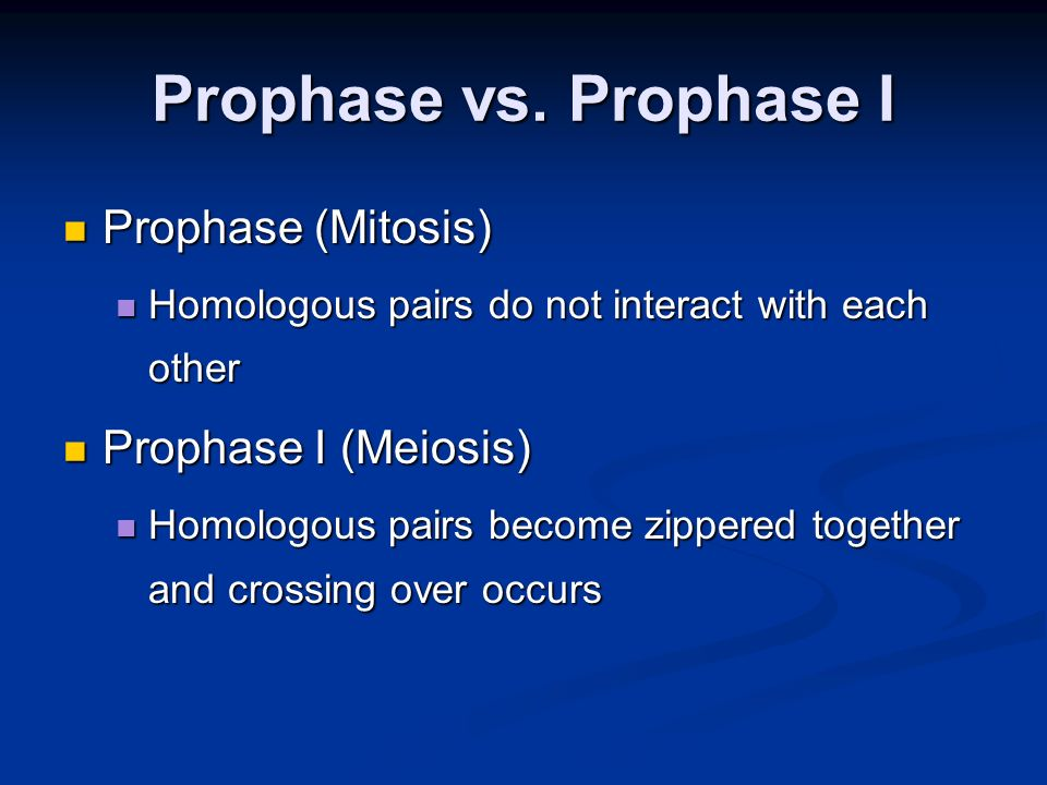Prophase vs. Prophase I Prophase (Mitosis) Prophase (Mitosis) Homologous pairs do not interact with each other Homologous pairs do not interact with e