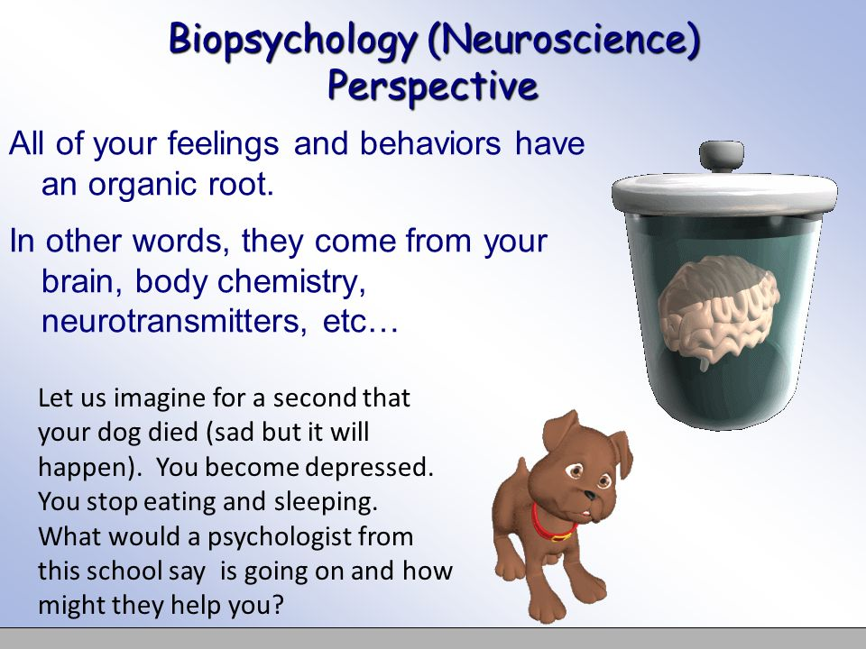 Biopsychology (Neuroscience) Perspective All of your feelings and behaviors have an organic root. In other words, they come from your brain, body chem