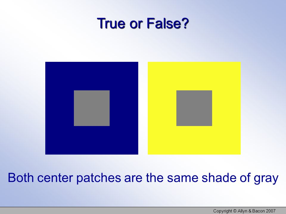 Copyright © Allyn & Bacon 2007 True or False? Both center patches are the same shade of gray
