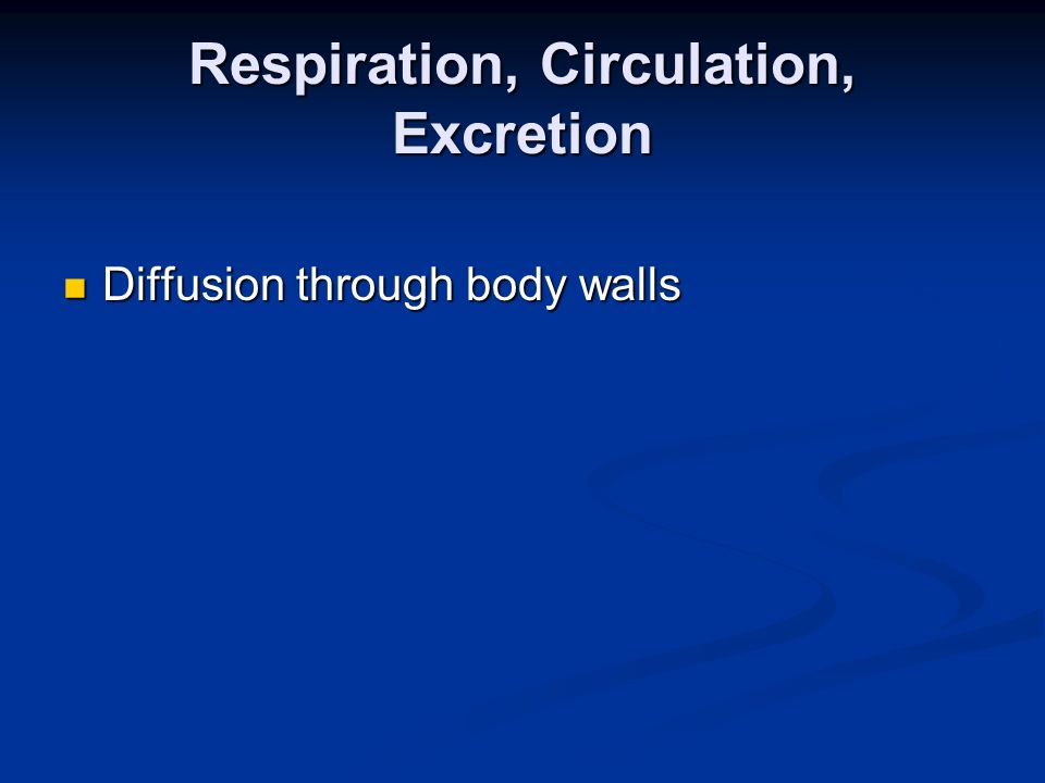 Respiration, Circulation, Excretion Diffusion through body walls Diffusion through body walls