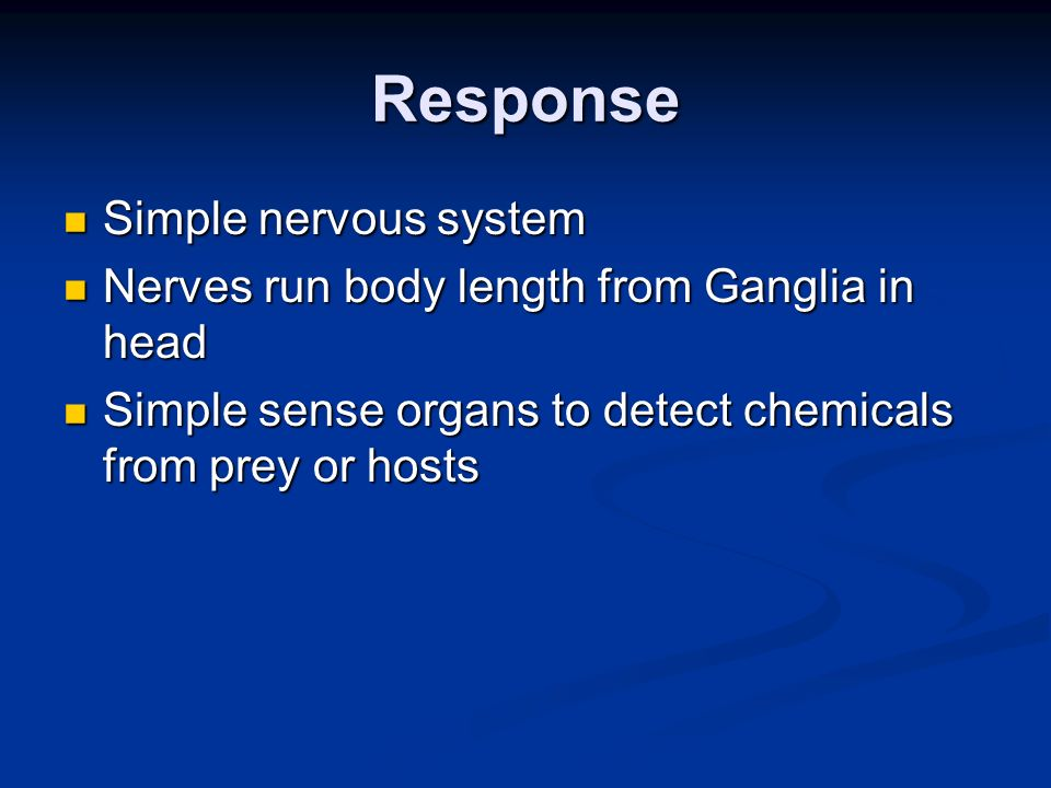 Response Simple nervous system Simple nervous system Nerves run body length from Ganglia in head Nerves run body length from Ganglia in head Simple se