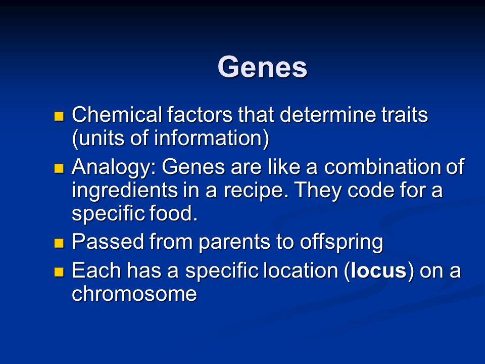 Genes Chemical factors that determine traits (units of information) Chemical factors that determine traits (units of information) Analogy: Genes are l