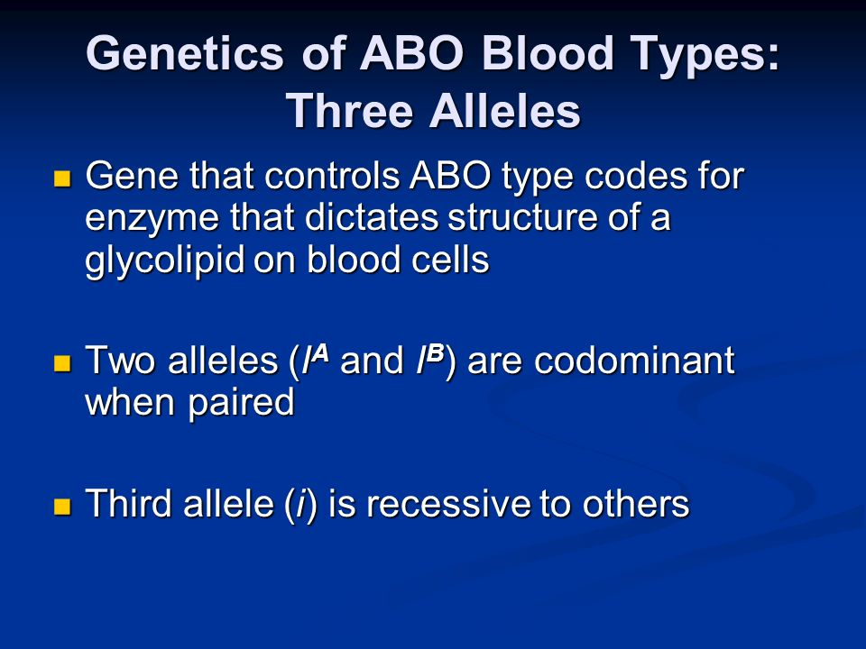Genetics of ABO Blood Types: Three Alleles Gene that controls ABO type codes for enzyme that dictates structure of a glycolipid on blood cells Gene th