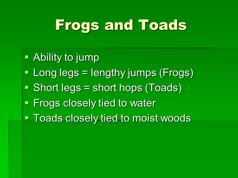 Frogs and Toads Ability to jump Ability to jump Long legs = lengthy jumps (Frogs) Long legs = lengthy jumps (Frogs) Short legs = short hops (Toads) Short legs = short hops (Toads) Frogs closely tied to water Frogs closely tied to water Toads closely tied to moist woods Toads closely tied to moist woods
