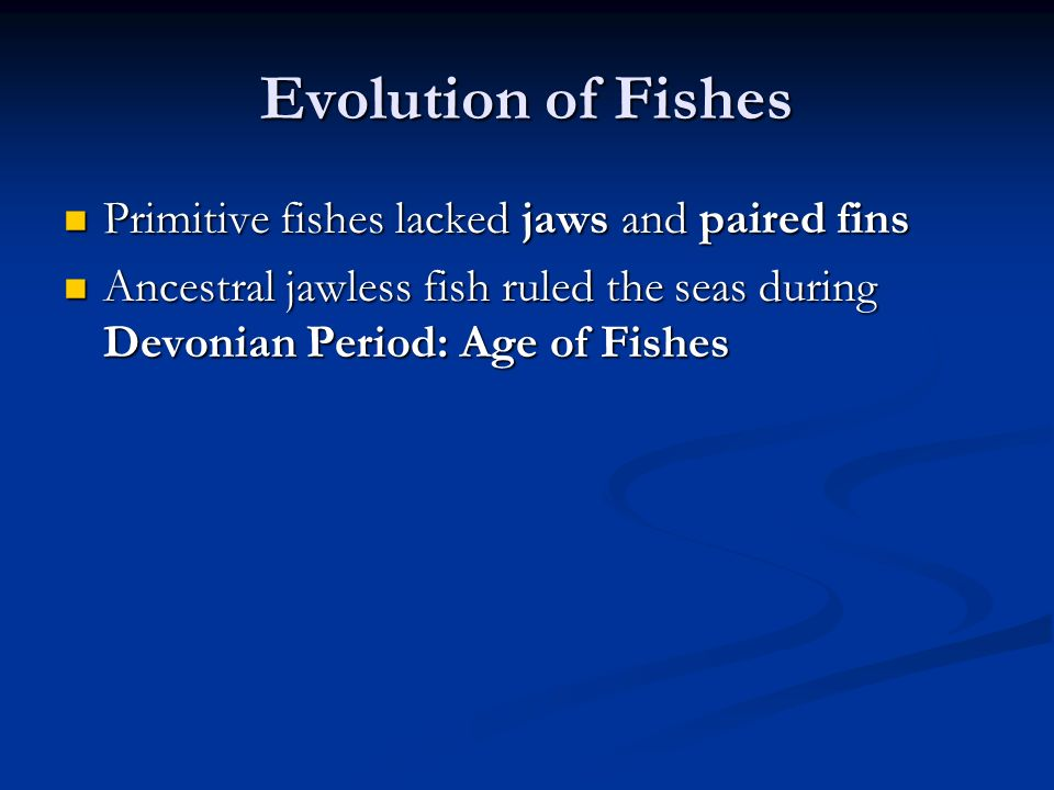 Evolution of Fishes Primitive fishes lacked jaws and paired fins Primitive fishes lacked jaws and paired fins Ancestral jawless fish ruled the seas du