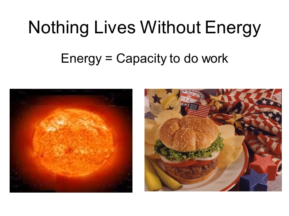 Nothing Lives Without Energy Energy = Capacity to do work