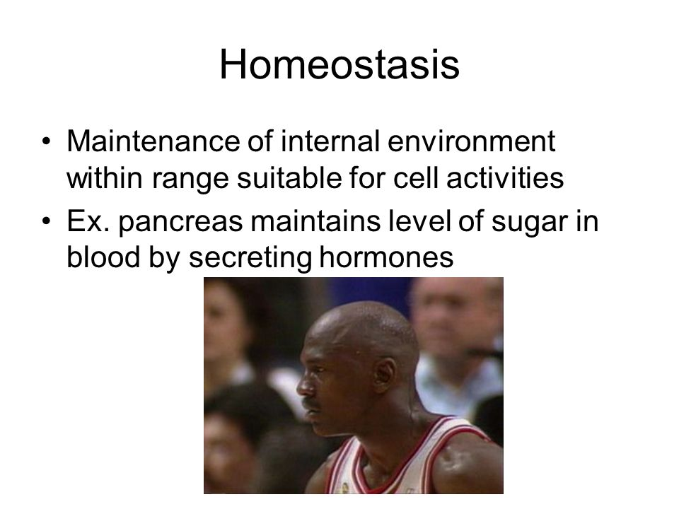 Homeostasis Maintenance of internal environment within range suitable for cell activities Ex. pancreas maintains level of sugar in blood by secreting