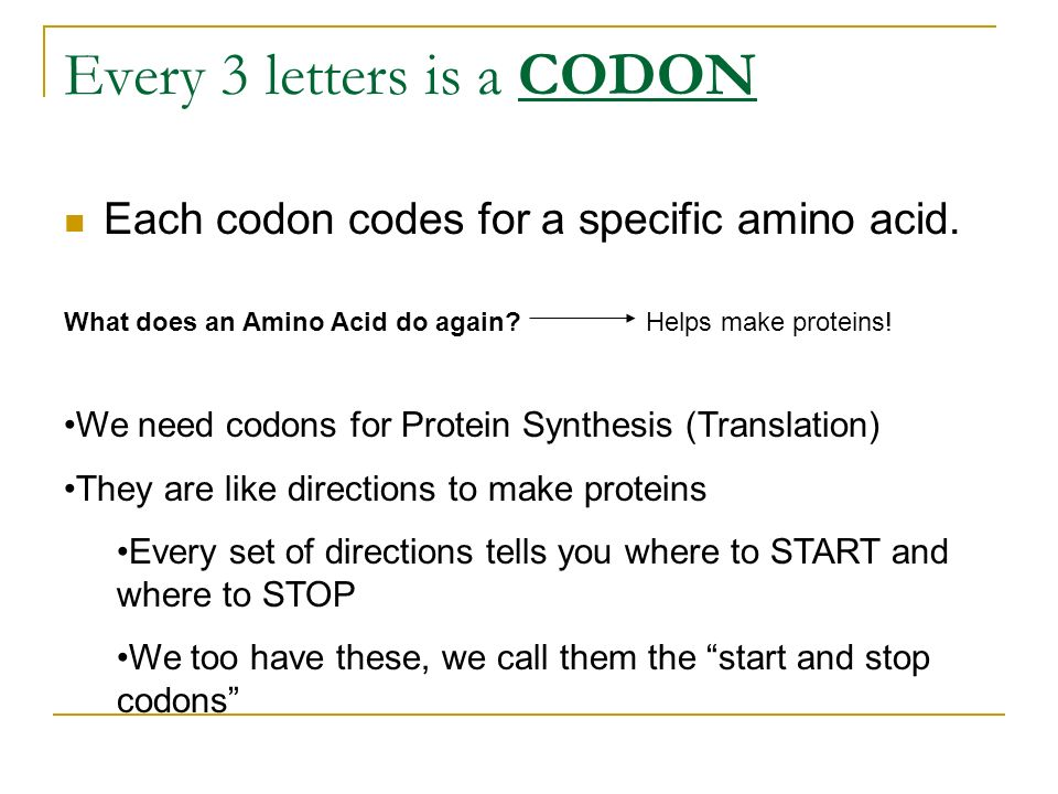 Every 3 letters is a CODON Each codon codes for a specific amino acid. What does an Amino Acid do again?Helps make proteins! We need codons for Protei