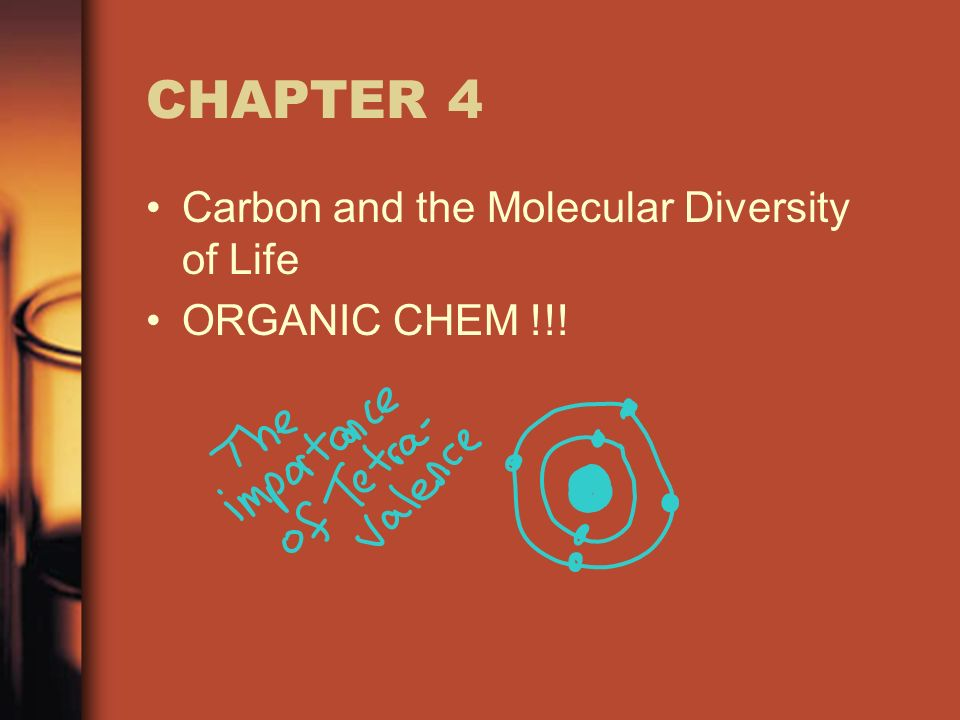 CHAPTER 4 Carbon and the Molecular Diversity of Life ORGANIC CHEM !!!