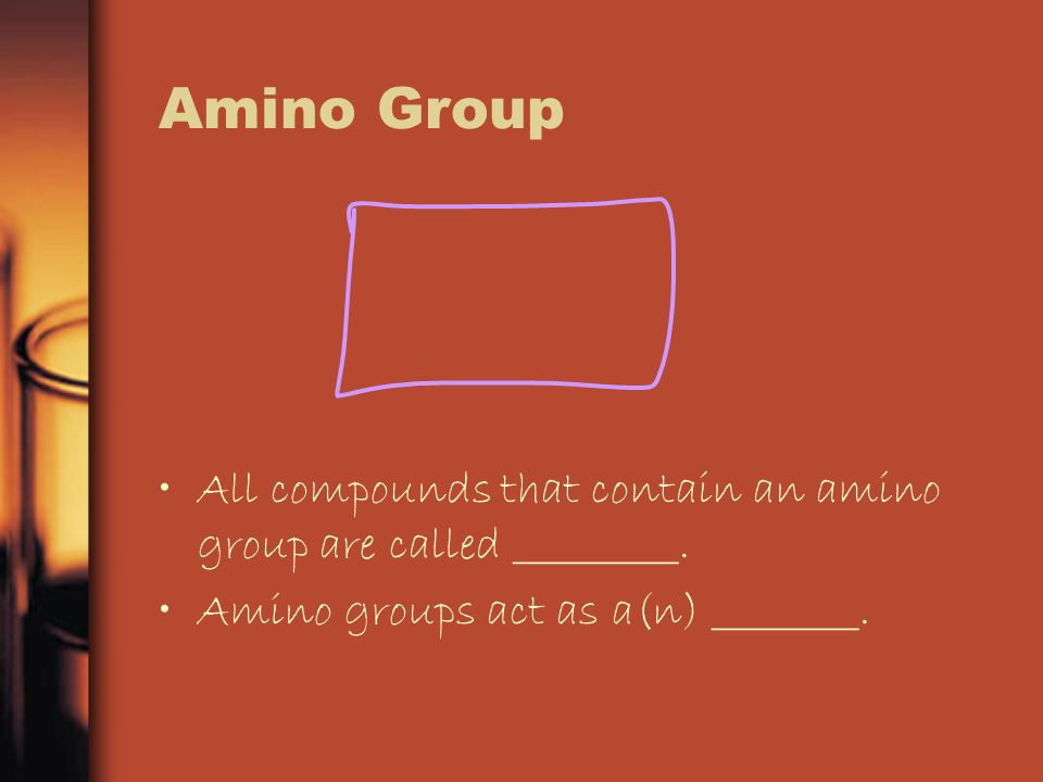 Amino Group All compounds that contain an amino group are called _________.