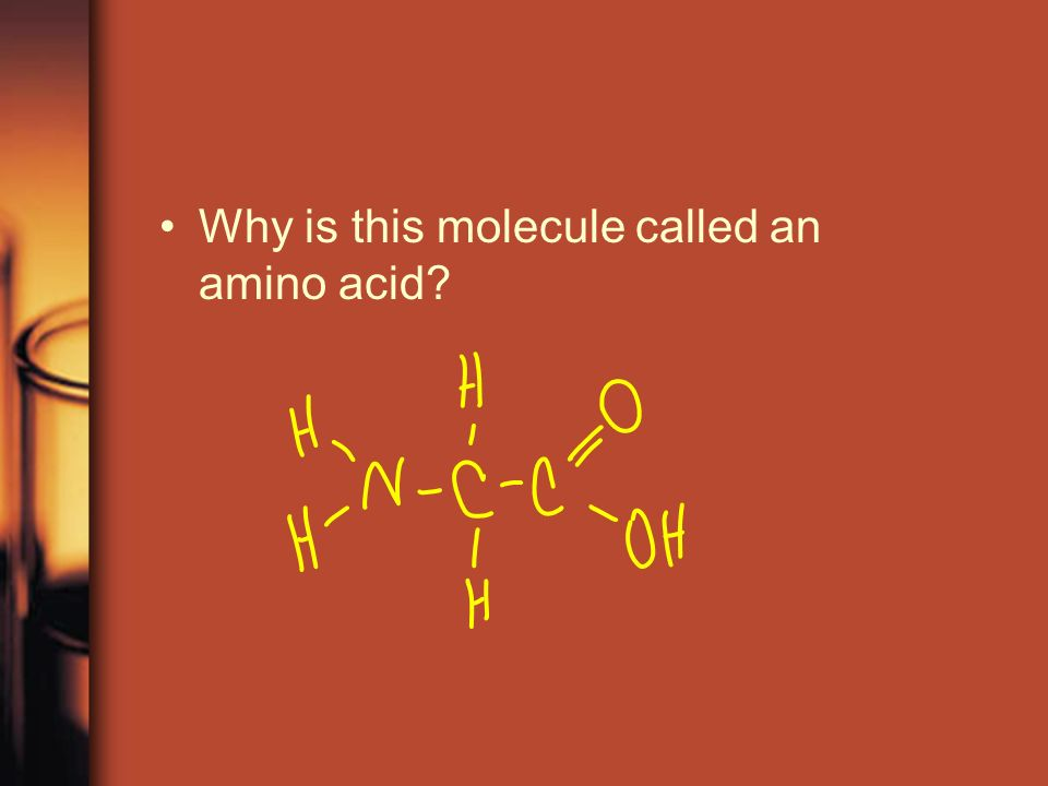 Why is this molecule called an amino acid