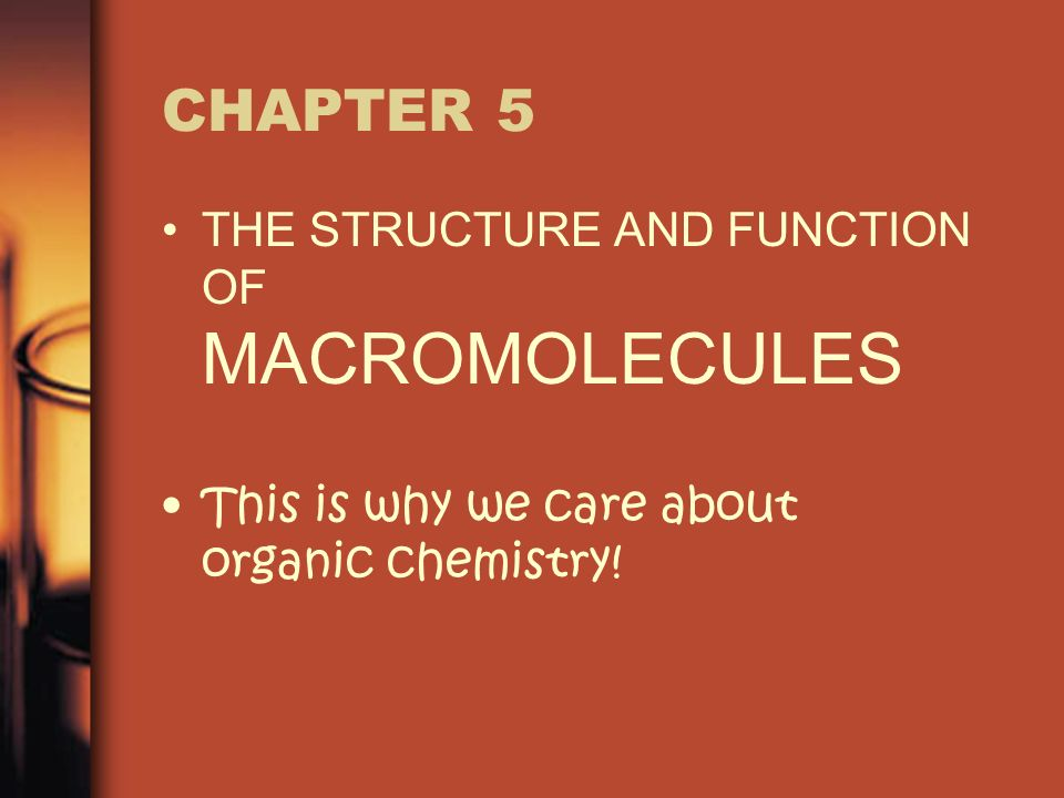 CHAPTER 5 THE STRUCTURE AND FUNCTION OF MACROMOLECULES This is why we care about organic chemistry!