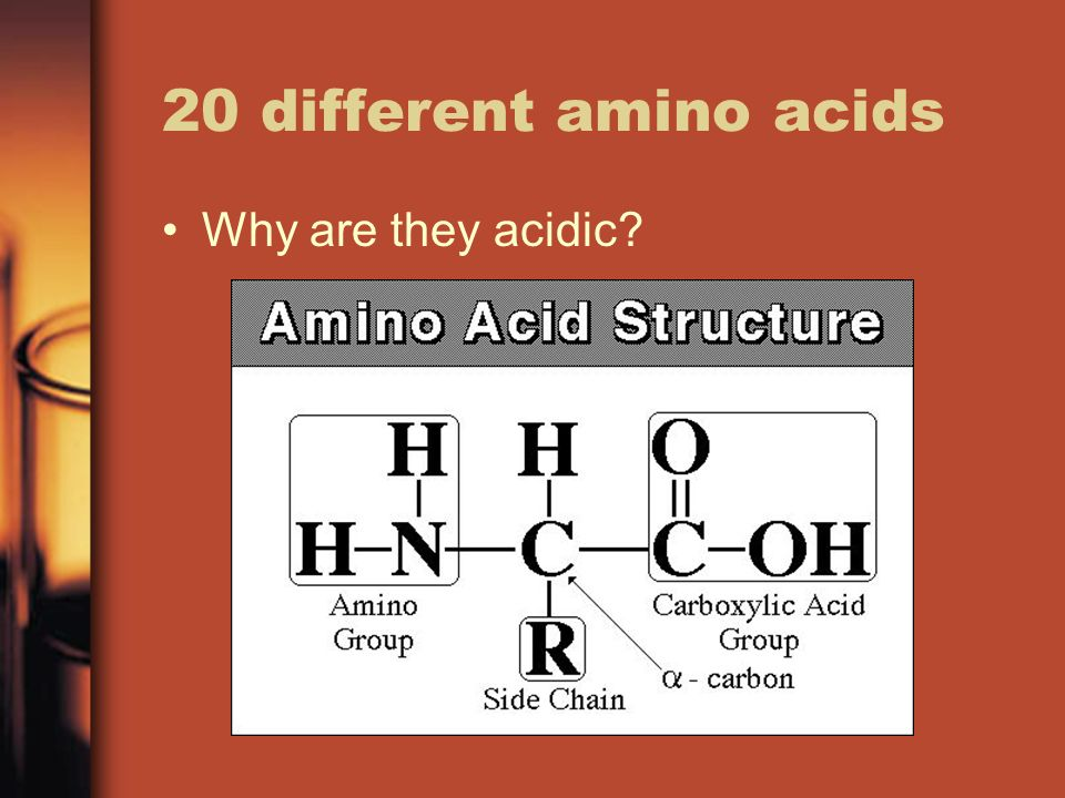20 different amino acids Why are they acidic