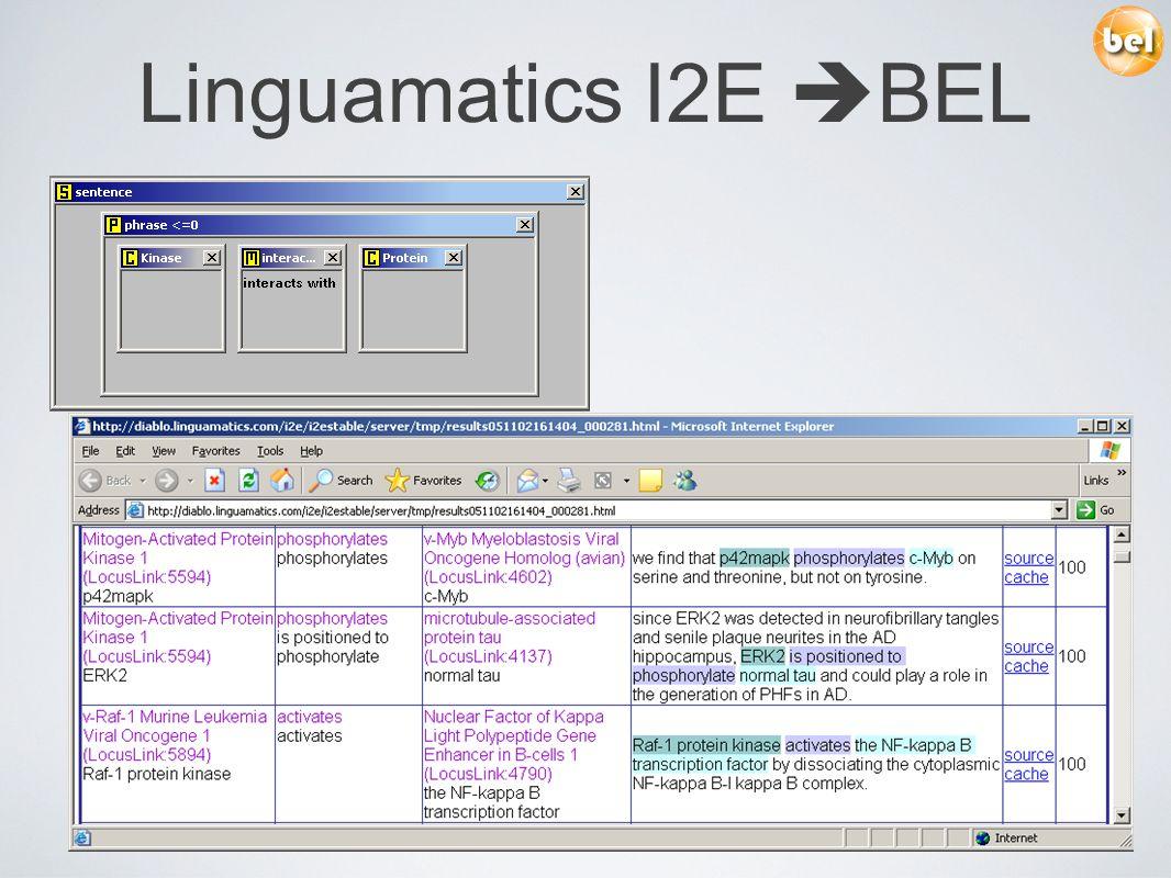 Linguamatics I2E BEL