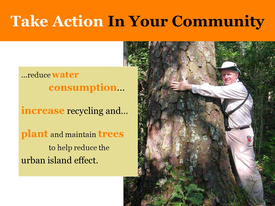 …reduce water consumption… increase recycling and… plant and maintain trees to help reduce the urban island effect.