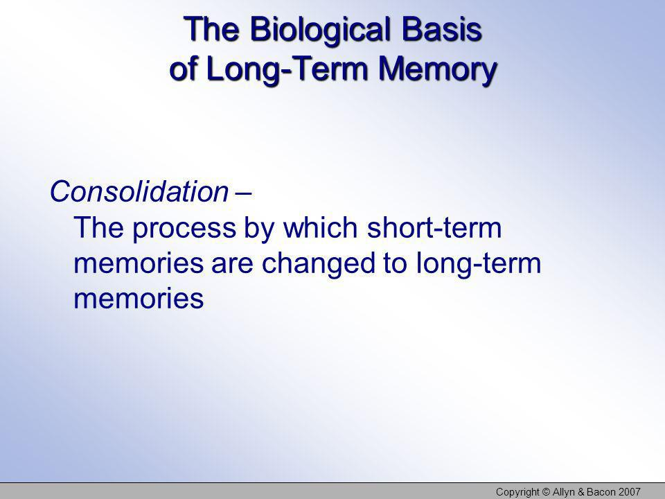 The Biological Basis of Long-Term Memory Consolidation – The process by which short-term memories are changed to long-term memories