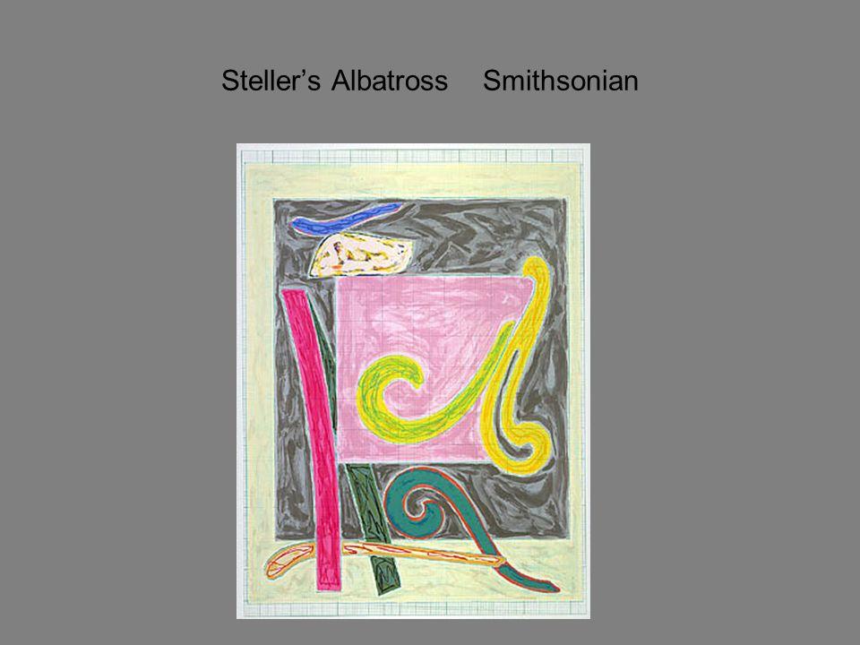 Stellers Albatross Smithsonian