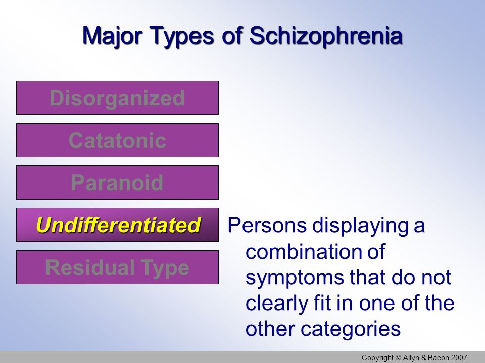 Copyright © Allyn & Bacon 2007 Disorganized Catatonic Paranoid Undifferentiated Major Types of Schizophrenia Persons displaying a combination of sympt