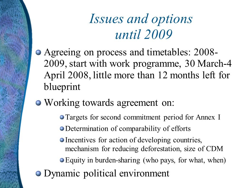 Issues and options until 2009 Agreeing on process and timetables: 2008- 2009, start with work programme, 30 March-4 April 2008, little more than 12 months left for blueprint Working towards agreement on: Targets for second commitment period for Annex I Determination of comparability of efforts Incentives for action of developing countries, mechanism for reducing deforestation, size of CDM Equity in burden-sharing (who pays, for what, when) Dynamic political environment