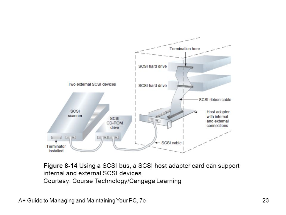 A+ Guide to Managing and Maintaining Your PC, 7e23 Figure 8-14 Using a SCSI bus, a SCSI host adapter card can support internal and external SCSI devic