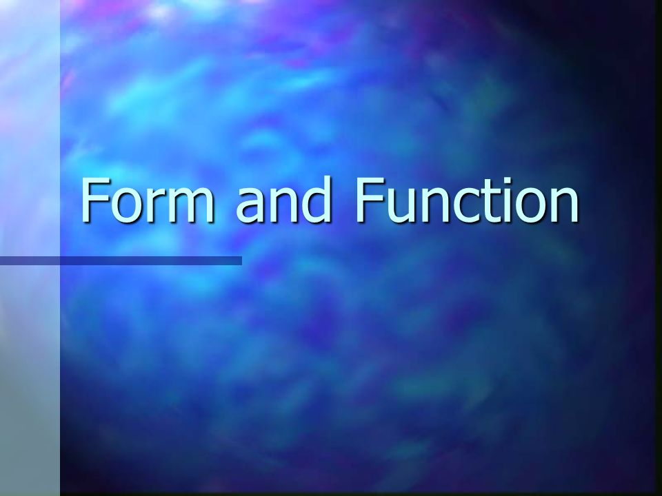 Form and Function