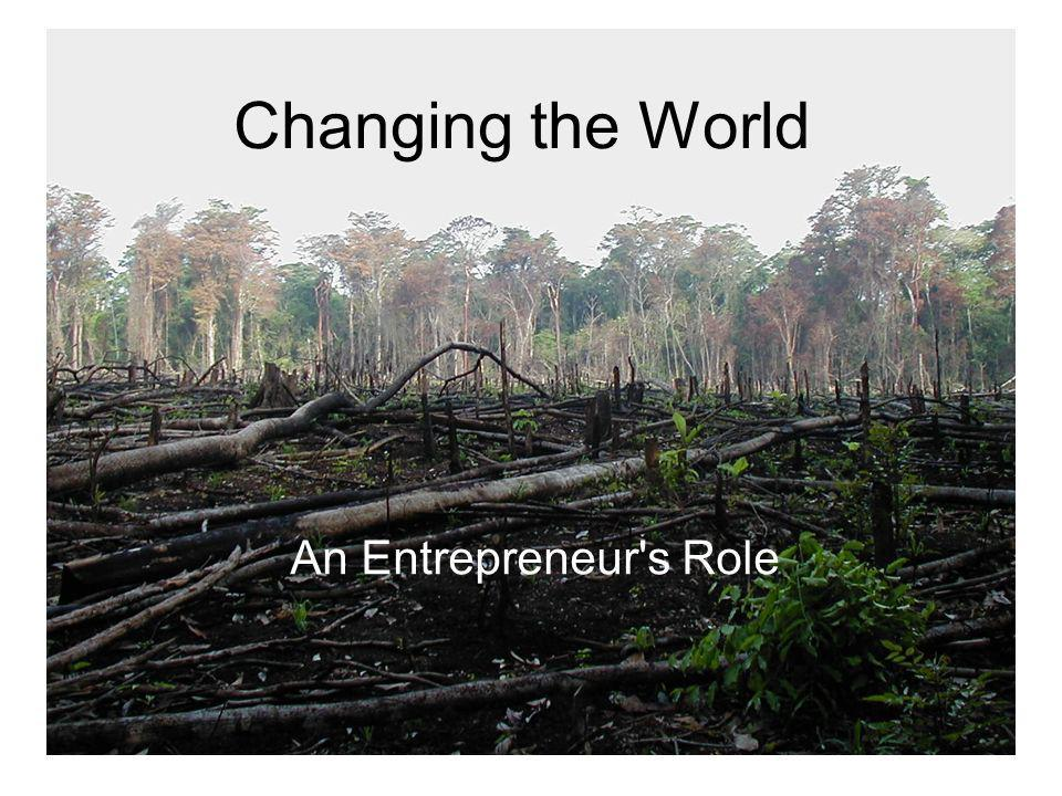 Changing the World An Entrepreneur s Role