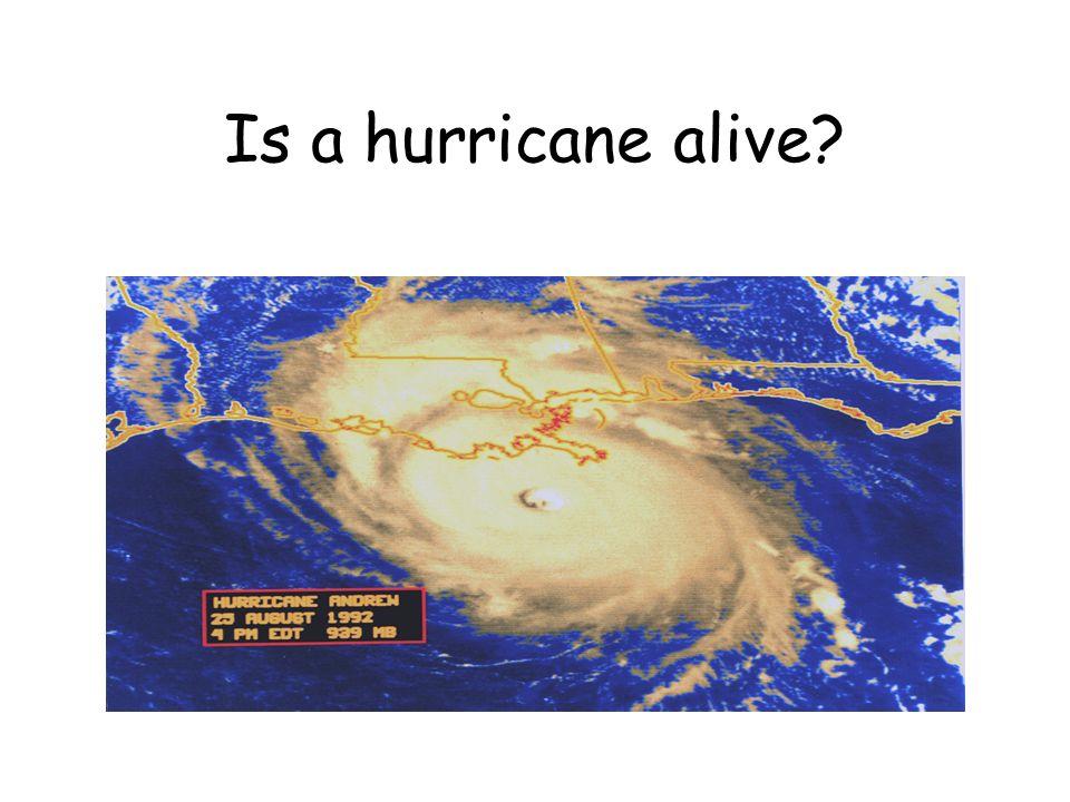 Is a hurricane alive?