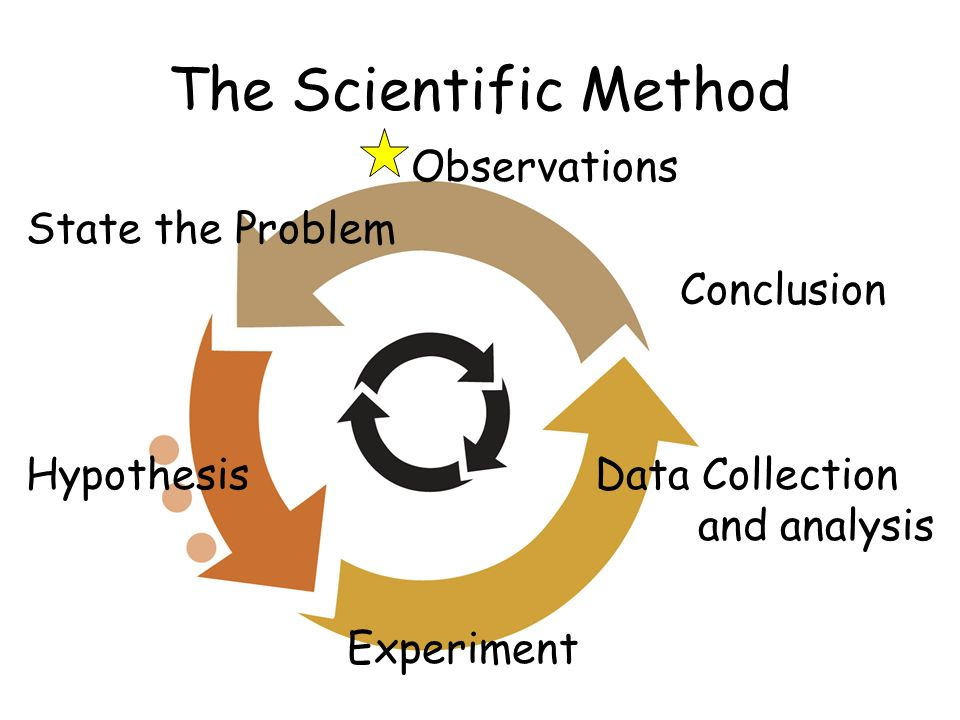 The Scientific Method Observations State the Problem Conclusion Hypothesis Data Collection and analysis Experiment