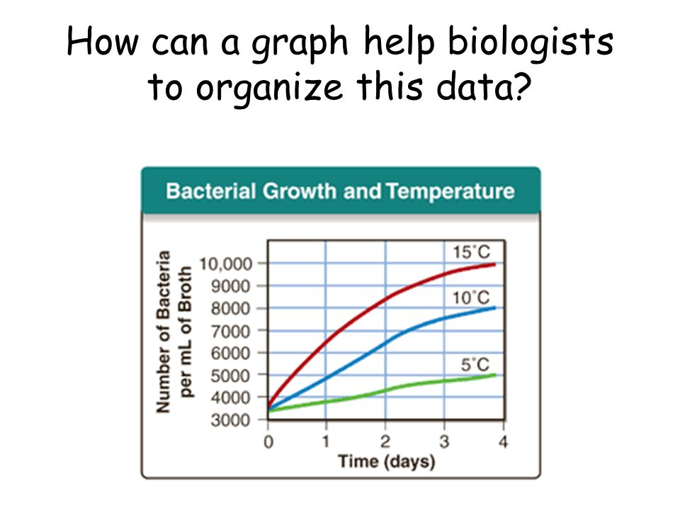 How can a graph help biologists to organize this data?