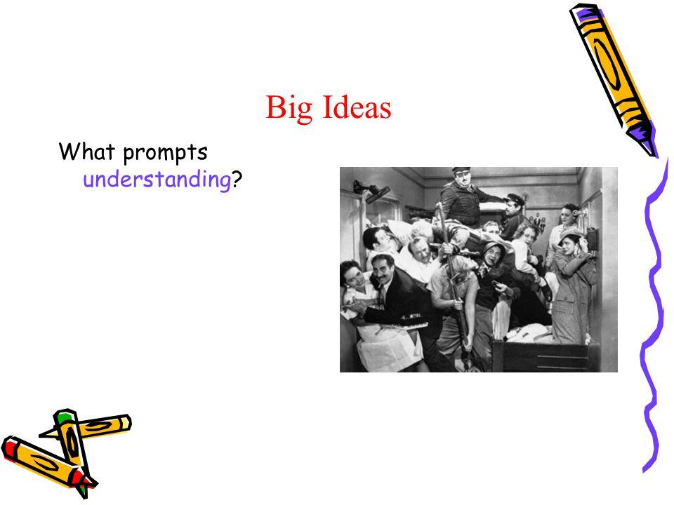 Big Ideas What prompts understanding?