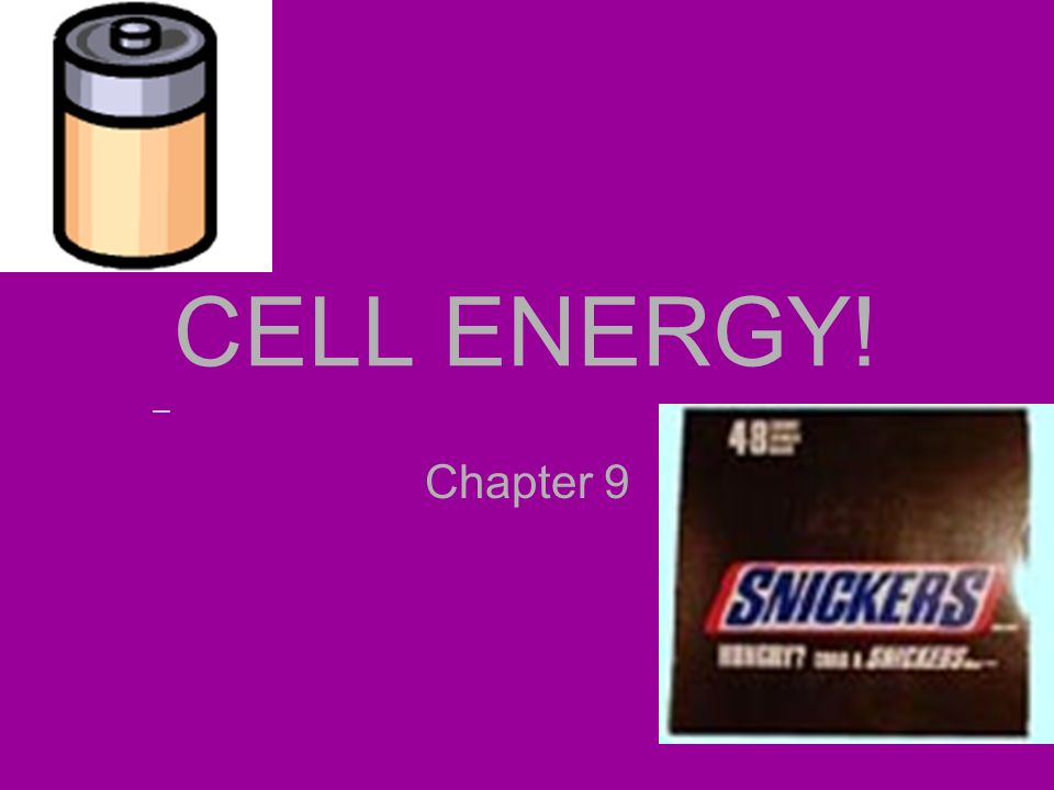 CELL ENERGY! Chapter 9