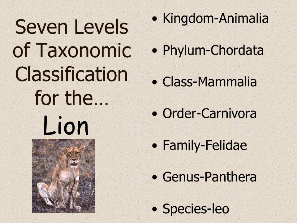 Seven Levels of Taxonomic Classification for the… Kingdom-Animalia Phylum-Chordata Class-Mammalia Order-Carnivora Family-Felidae Genus-Panthera Specie