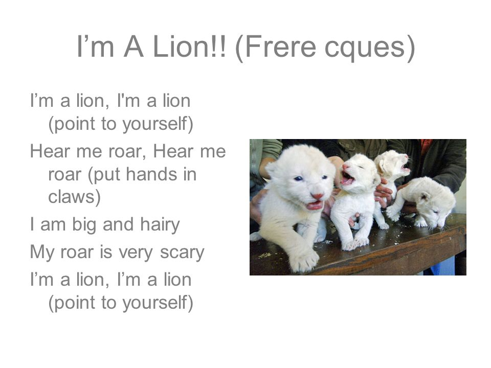 Im A Lion!! (Frere cques) Im a lion, I'm a lion (point to yourself) Hear me roar, Hear me roar (put hands in claws) I am big and hairy My roar is very