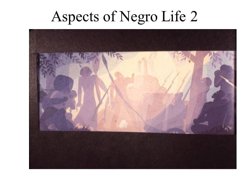 Aspects of Negro Life 2