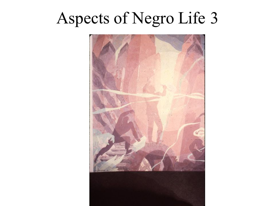 Aspects of Negro Life 3