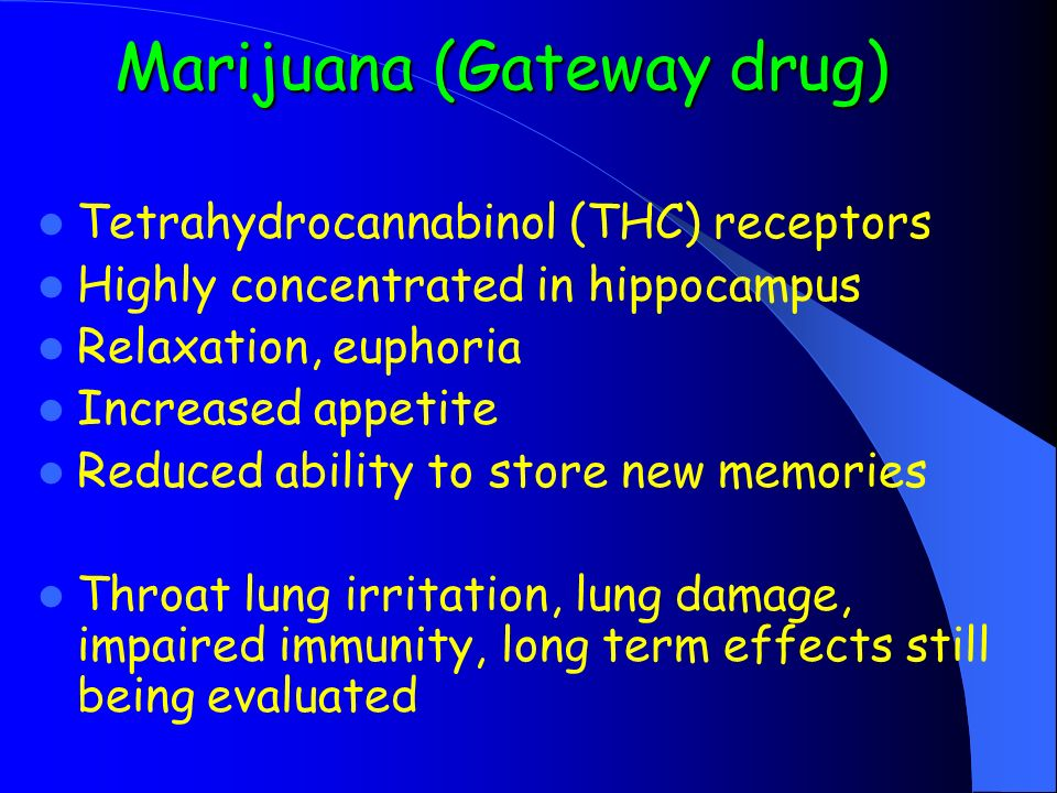 Marijuana (Gateway drug) Tetrahydrocannabinol (THC) receptors Highly concentrated in hippocampus Relaxation, euphoria Increased appetite Reduced ability to store new memories Throat lung irritation, lung damage, impaired immunity, long term effects still being evaluated